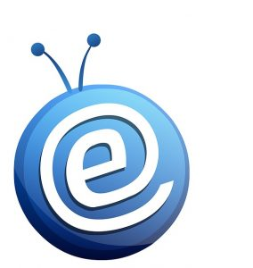 Executive Job Search Email Mistakes: Careless Email Address and Subject Line